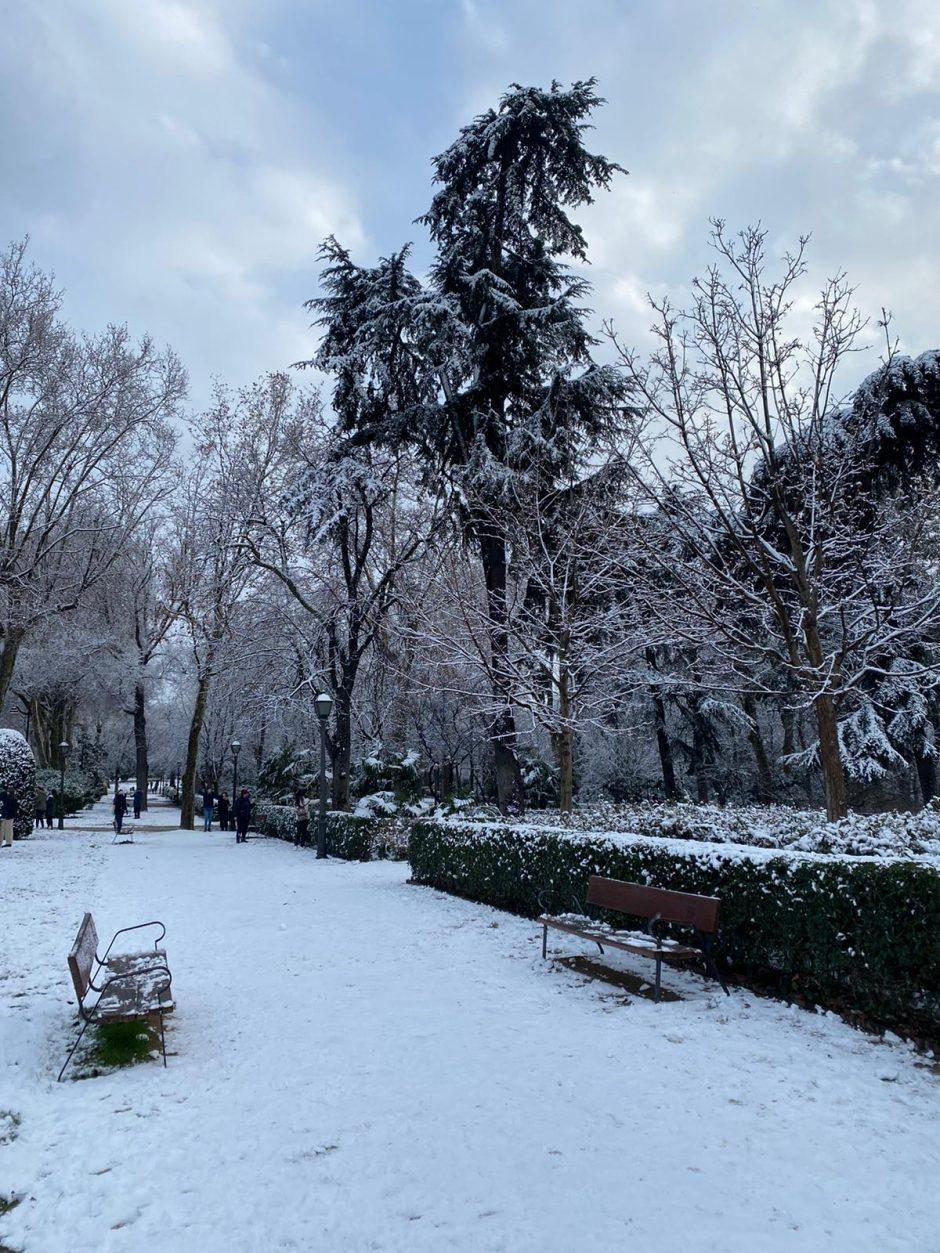 Parque El Retiro nevado