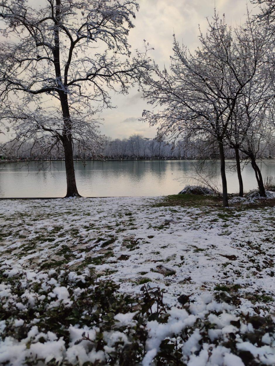 Parque de El Retiro durante la nevada